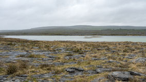 Rugged landscape of Burren in Ireland Royalty Free Stock Photo