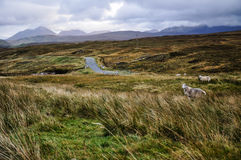 Rugged landscape on the Isle of Skye - Scotland, UK Royalty Free Stock Images