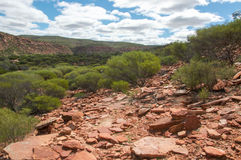 Rugged Landscape Stock Images