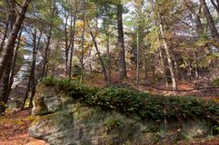 Rugged Landscape of Petenwell Bluff. Rock forms and forest scenery of  petenwell bluff in juneau county necedah wisconsin Stock Image