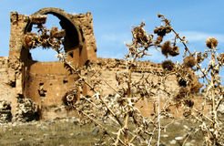 Rugged Landscape and ruins of Ancient Ani. Ani is the Ancient capital of Armenia. This is a rugged landscape of the ancient grounds in spring along with the Royalty Free Stock Photo