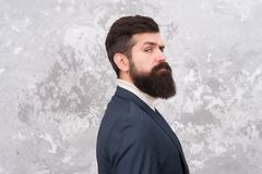 Rugged and manly. Tailor or fashion designer. Modern life. Brutal bearded hipster in formal suit. elegant man with beard royalty free stock photos