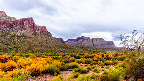 Rugged Mountains along the Salt River in central Arizona in the United States of America. Rugged Mountains and fall colored brush along the Salt River in central stock photos