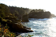 Rugged Pacific Northwest Coastline in Morning Light Stock Images