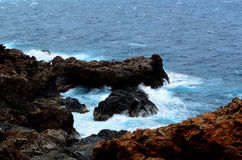 Rugged and Ragged Lava Rocks Along the Aruban Coast Royalty Free Stock Photography