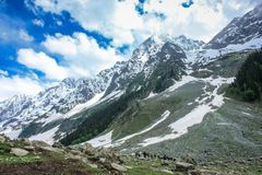 Rugged road to Thajiwas glacier. People trekking or taking a pony ride to Thajiwas glacier through a rugged mountain road surrounded by snow capped mountains in Royalty Free Stock Photography