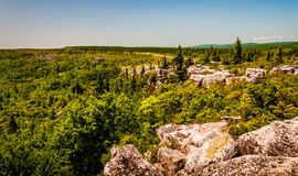 The rugged, rocky terrain of Bear Rocks, in Dolly Sods Wildernes Stock Photo