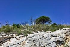 Rugged Roadside Terrain, Bosnia, Dalmation Coast. Rugged rocky terrain with sparse vegetation, on road from Bosnia to Montenegro, Dalmation Coast, Europe stock photos