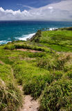 Rugged shores of Maui Royalty Free Stock Photography
