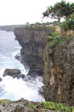 Rugged Tongan Coastline Stock Image