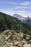 Rugged Utah. Utah mountains with forests, rocks and melting snow stock image