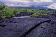 Fernandina Landscape Galapagos Islands royalty free stock photography