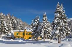 Rugiada sotto neve Fotografie Stock