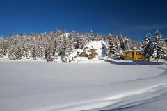 Rugiada sotto neve Fotografie Stock Libere da Diritti