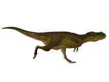 Rugops恐龙边外形 库存图片