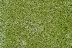 Rugose gräs Royaltyfri Bild