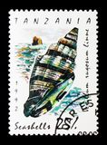Rugose Mitre Vexillum rugosum, Sea snails and mussels serie, c. MOSCOW, RUSSIA - JANUARY 2, 2018: A stamp printed in Tanzania shows Rugose Mitre Vexillum rugosum Royalty Free Stock Photography