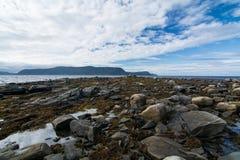 Rugoso, Rocky Coast en Terranova, Canadá Imágenes de archivo libres de regalías