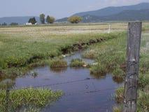 Ruhe eines Nebenflusses, der durch ein Feld im Land läuft stockfotografie