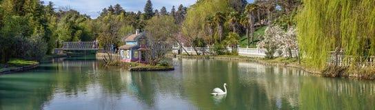 Ruhe im Teich von südlichen Kulturen des Parks ADLER, RUSSLAND Stockbilder