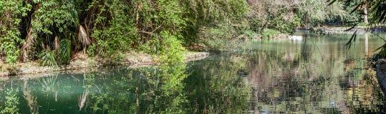 Ruhe im Teich von südlichen Kulturen des Parks ADLER, RUSSLAND Stockfoto