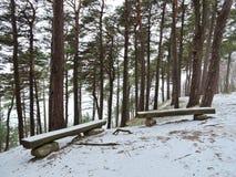 Ruheplatz auf Ostseeküste, Litauen Lizenzfreies Stockfoto