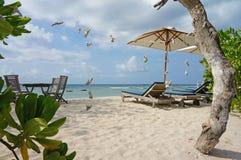 Ruhesessel und Sonnenschirm auf feinem Sandstrand Lizenzfreie Stockfotos