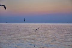 Ruhig vom Meer lizenzfreies stockbild