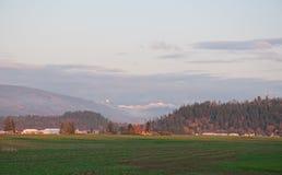 Ruhige Ackerland-Landschaft Stockfotografie