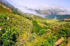 Ruhige Berglandschaft Stockbilder