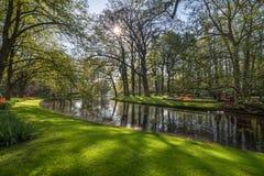 Ruhige Ecke mit Blumen und Wasser an den Keukenhof-Gärten lizenzfreie stockfotografie
