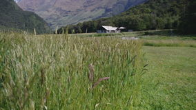 Ruhige Gebirgshütte in Neuseeland stock video footage