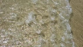 Ruhige Gezeiten in der Zeitlupe Wellen auf dem Strand Floripa, Brasilien stock footage