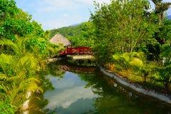 Ruhige Landschaft - die Brücke im Dschungel Stockfoto