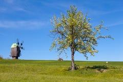 Ruhige Landschaft mit Windmühle Stockbild