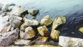Ruhige Natur lizenzfreies stockfoto