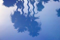 Ruhige Palmen-Reflexion stockfoto