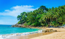 Ruhige Paradiesstrand-Palmen, Thailand Stockbild