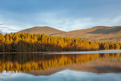 Ruhige Reflexionen auf Wasser mit Landschaft Lizenzfreie Stockfotografie