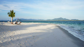 Ruhige Strandszene mit einer Palme Stockfotos