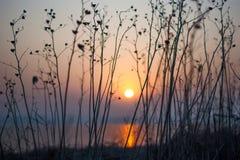 Ruhige Szene des ruhigen Sonnenaufgangs des Morgens roten Lizenzfreies Stockfoto