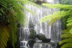 Ruhige Wasserfallszene in einem abgelegenen Standort Stockfotografie