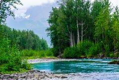 Ruhiger alaskischer Fluss Stockfotografie