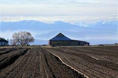Ruhiger Bauernhof Stockfotos