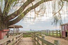 Ruhiger Bauernhof Stockfoto