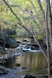 Ruhiger Fluss Stockbild