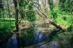 Ruhiger Fluss Lizenzfreies Stockbild