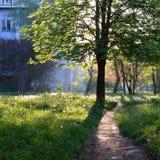 Ruhiger Frühlingsmorgen in einem alten Wohnvorort Lizenzfreie Stockfotografie