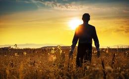 Ruhiger Geschäftsmann, der in Richtung zum Sonnenaufgang geht lizenzfreies stockbild