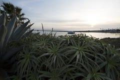 Ruhiger Hafen mit Einlass hinter Büschen im Vordergrund mit Boot an s Stockbilder
